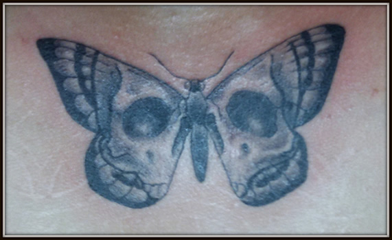 Skull Butterfly by Grego Peyton