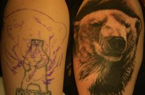Bear Cover Up by Steve Fuller