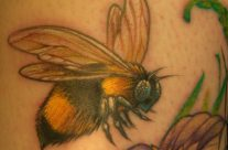 Bumble Bee by Steve Fuller